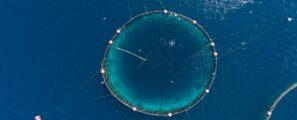 Déchets Plastique Aquaculture