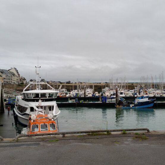 Aménagement Port de la Turballe