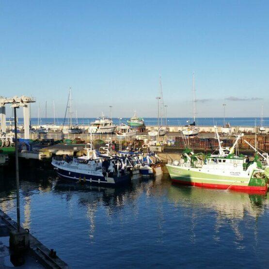 Aménagement-du-port-de-la-Turballe-4-1-scaled (1)