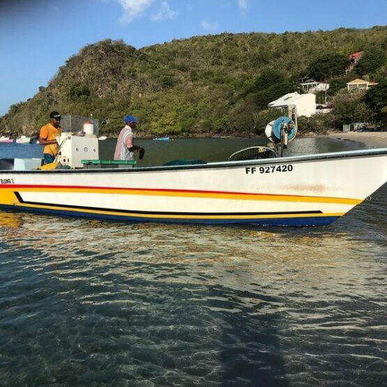 Association-COPEM-Martinique-Odyssée Développement