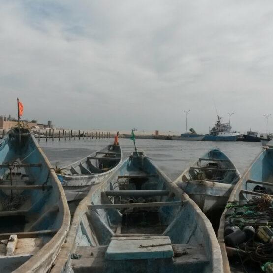 Economie-maritime-mauritanie