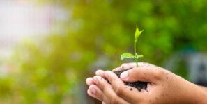 Nos engagements Environnementaux