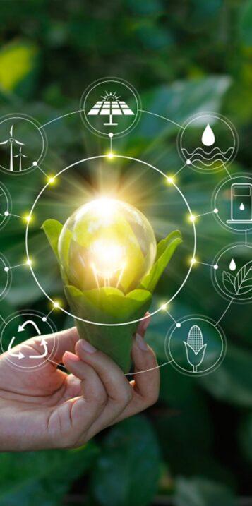 Accompagnement et Évaluation environnementale