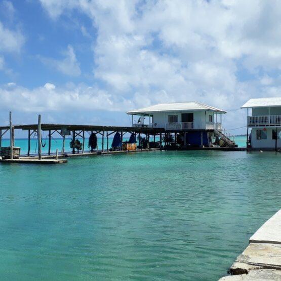 GPEC Polynésie - Odyssée Développement