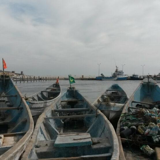 Odyssée-Développement-Nouakchott-Mauritanie (1)