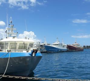 Polynésie Odyssée Développement