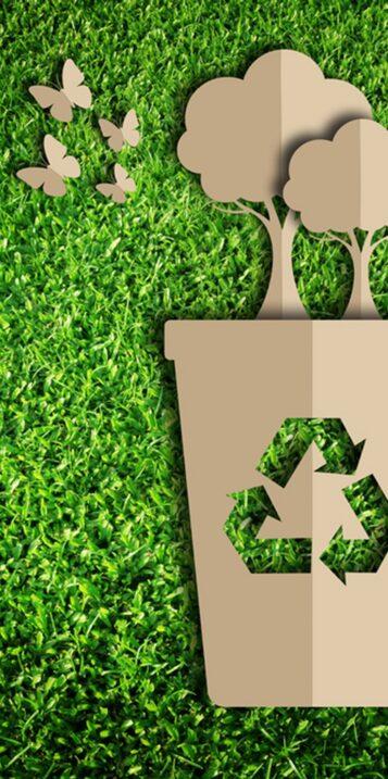 Conseil et prévention des déchets et économie circulaire