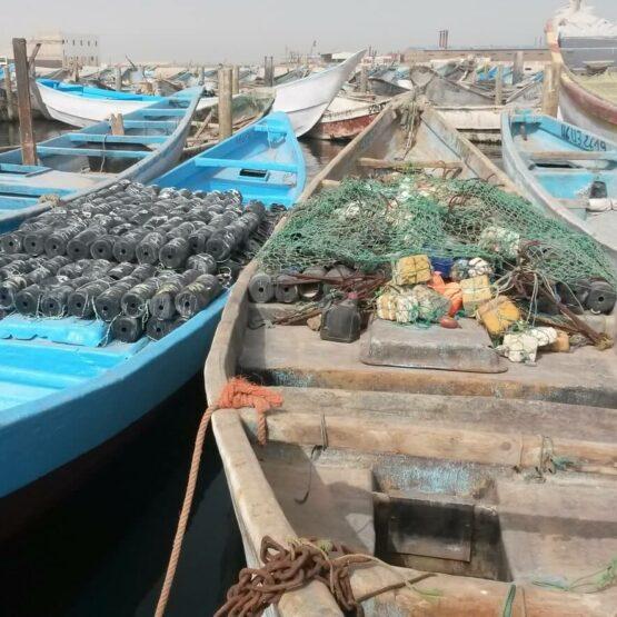 Traitement-des-eaux-Odyssée-Développement