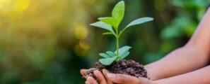 Actualité Girus GE est devenu Elcimaï Environnement