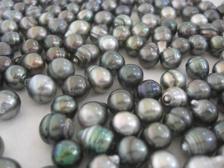 Perliculture en Polynésie Française